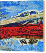 Manas Sarovr Lake-12 Wood Print