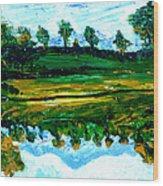 Manas Sarovr Lake-13 Wood Print