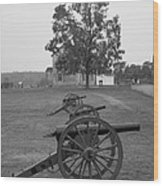 Manassas Battlefield Cannon And House Wood Print