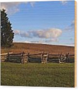 Manassas Battlefield  Wood Print