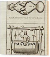 Manatee And War Drum Wood Print