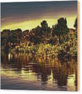 Manatee Island 1 Wood Print
