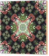 Mandala 113 Wood Print