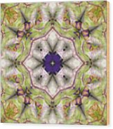 Mandala 127 Wood Print