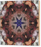 Mandala 14 Wood Print by Terry Reynoldson