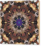 Mandala 18 Wood Print