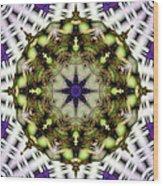 Mandala 21 Wood Print