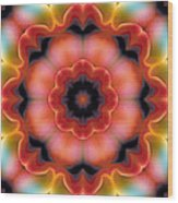 Mandala 91 Wood Print