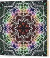 Mandala Cage Of Light Wood Print