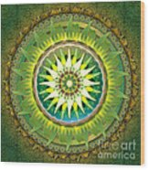 Mandala Green Wood Print by Bedros Awak