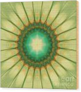 Mandala Of The Hope Wood Print