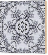 Mandala100 Wood Print