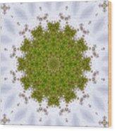 Mandala103 Wood Print