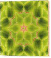 Mandala80 Wood Print