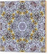 Mandala90 Wood Print