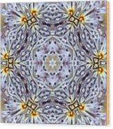 Mandala94 Wood Print