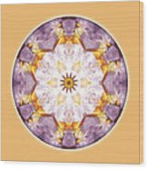 Mandalas From The Heart Of Transformation No. 12 Wood Print