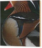 Mandarin Duck On Guard Wood Print