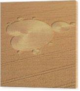 Mandelbrot Set Crop Circle Wood Print