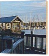 Mandarin Park Boathouse Wood Print