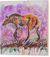 Maned Wolf Wood Print