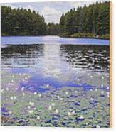 Manet's Inspiration Wood Print