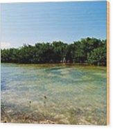 Mangrove @ Safehaven Sound Wood Print