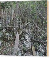 Mangrove 001 Wood Print