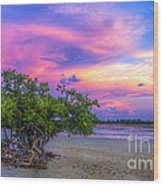 Mangrove By The Bay Wood Print by Marvin Spates