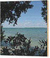 Mangrove Wood Print