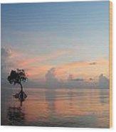 Mangrove Tree In Water At Sunrise Wood Print