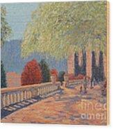 Manhattan Park Wood Print