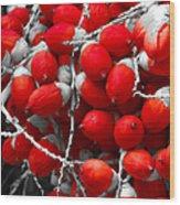 Manila Palm Red Wood Print