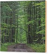 Manistee National Forest Michigan Wood Print
