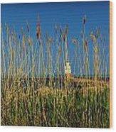 Manitowoc Breakwater Lighthouse Manitowoc Wi Wood Print