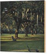 Manresa II Wood Print