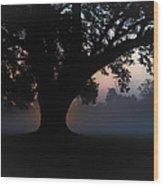 Manresa Iv Wood Print