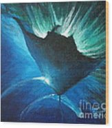 Manta At The Surface Wood Print