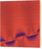 Manta Wood Print by Mike Turner