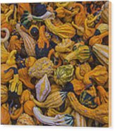 Many Colorful Gourds Wood Print
