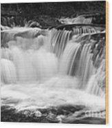 Many Falls - Bw Wood Print