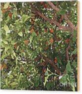 Many Orange On Tree Wood Print