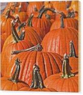 Many Pumpkins In A Row Art Prints Wood Print