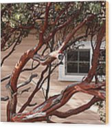 Manzanita Wood Print by Denice Breaux