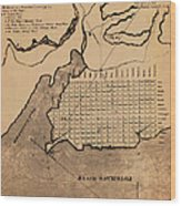 Map Of Alexandria 1798 Wood Print