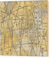 Map Of Secrets  Wood Print