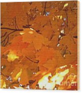 Maple Gold Wood Print