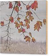 Maple In Gray Sky Wood Print