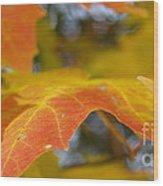 Maple Leaf Edges In Autumn Wood Print
