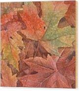 Maple Leaf Rag Wood Print